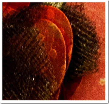 DSC_4032-cover-mini-album