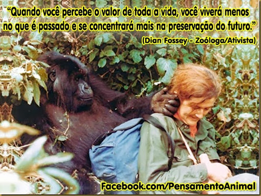 dian_fossey