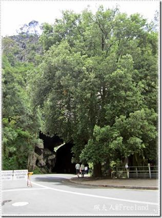 jenolan cave