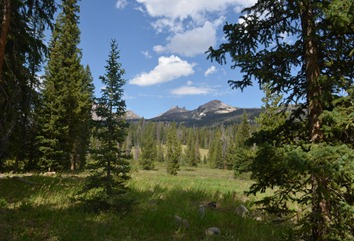 view from loop B in Falls Campground