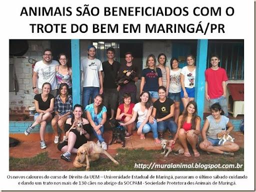 trote_do_bem