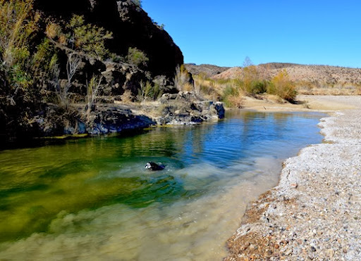 swimming in Terlingua Creek at the abajo ruins