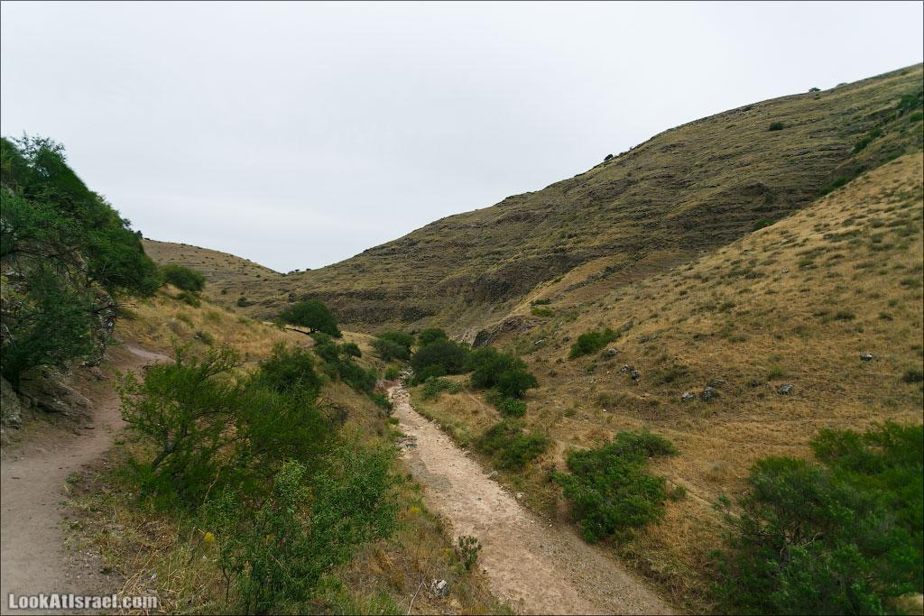 LookAtIsrael.com: Фото-блог о путешествиях по Израилю. Тель Авив, Иерусалим, Хайфа Нижняя часть ручья уже высохла. Остается лишь представлять как прекрасно тут когда есть вода
