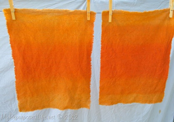 Dying Placemats (7)