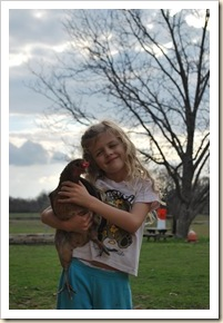 AG and chicken 2