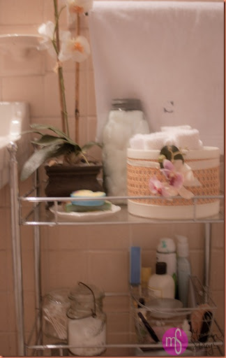 bathroom storage 010