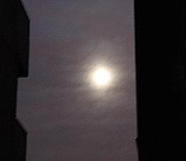 A única luz além do meu celular foi a lua.