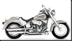 Harley FLSTFE 05