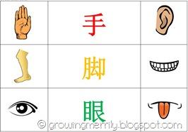 My Body Pocket Chart - Chinese