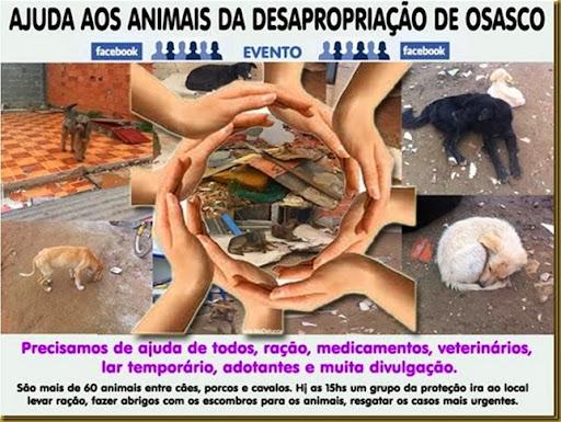 sos-animais-osasco2