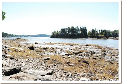 low tide island