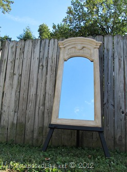plastic mirror redo (41)