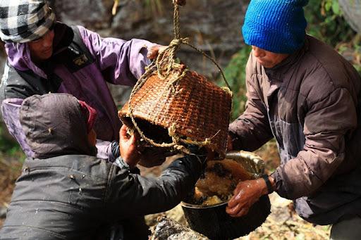 honey-cacciatori-nepal-31