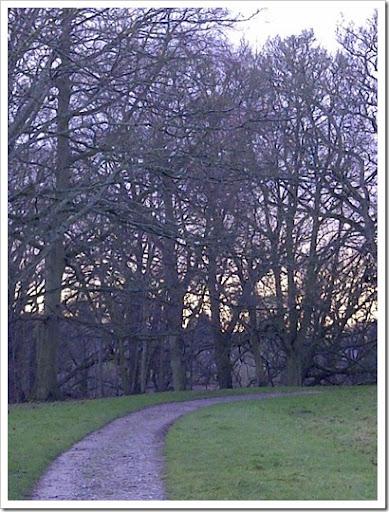 Durham-20121230-00159