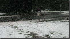 snow drive and jan blog photos 040
