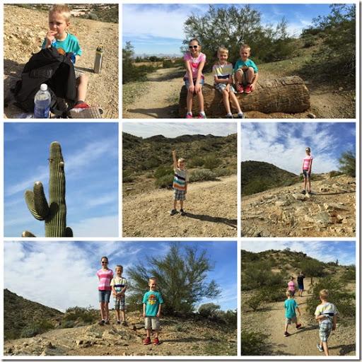 Phoenix hike Collage