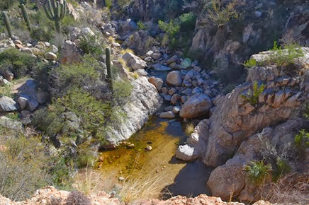 Montrose Pools on the Canyon Loop Trail at Catalina State Park Arizona