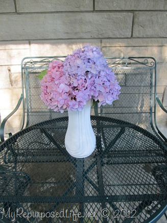 hydrangeas on the patio
