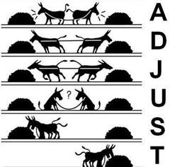 adjust please