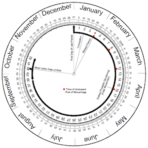 Pregnancy Calculator (Wheel)