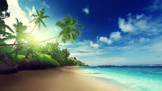 Beach Live Wallpaper screenshot 06