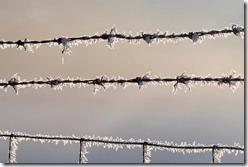 Wire and ice