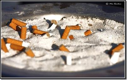 sigarett4