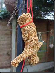 bungee seed feeder