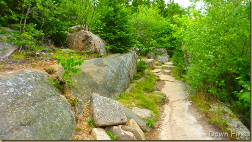 Gorham mt hike_030