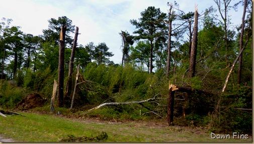 Tornado Damage Sanford NC_008