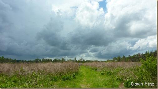 Clouds near Cassins Sp_007