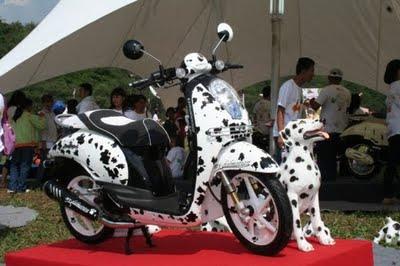 Foto Modifikasi Motor Honda Scoopy   Honda Scoopy Spesifikasi & Harga