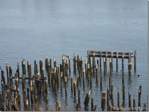 An old pier in the East River, directly opposite East River Plaza, on the other side of East River Drive.