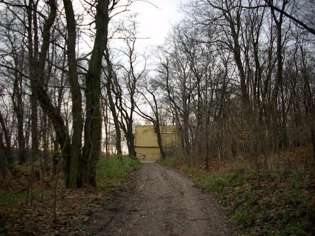 W tle poznańska żyrafiarnia