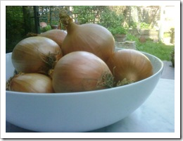 01 - A bowl of onions