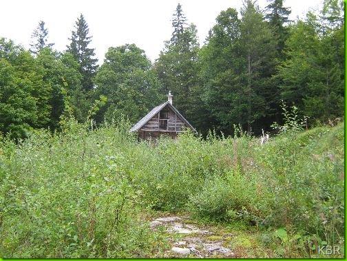 Hütte auf einer Lichtung