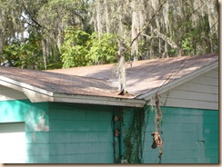 Tampa Roof Cleaning 012