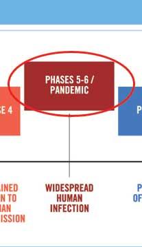 phases5-6.jpg