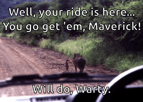 Well, your ride is here... Go get 'em, Maverick! Will do, Warty.