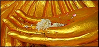 570349-Offerings-for-Buddha-1
