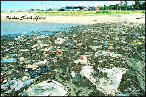 Durban waterfront Snowy Smith environmental photographer campaigner