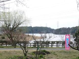 堤体への道中からダム湖を望む