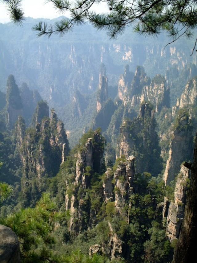 zhangjiajie (6)