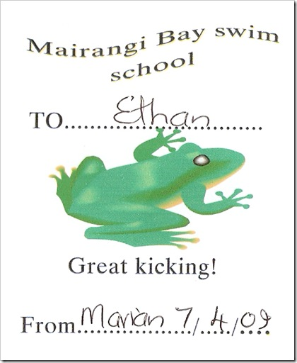 Swimming Cert