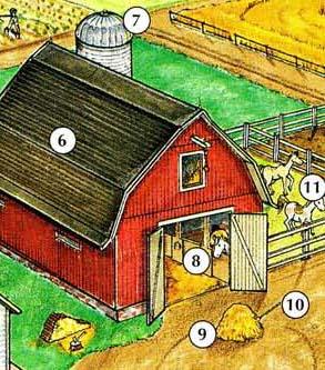6 ။ ကျီ 7 ။ 8 Silo များ။ တည်ငြိမ် 9 ။ မြက်ပင် 10 ။ ကောက်ဆွ 11 ။ barnyard