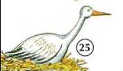 25. Cigüeña