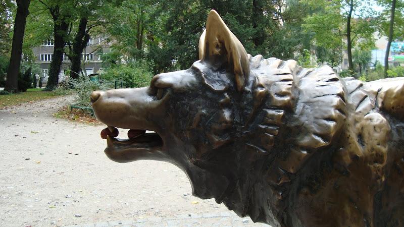 Głodny wilk nawet i kasztany zje...