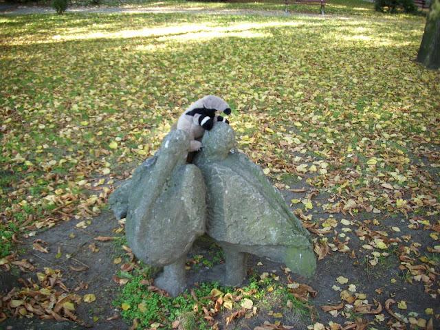 Mrówkojad i pelikany