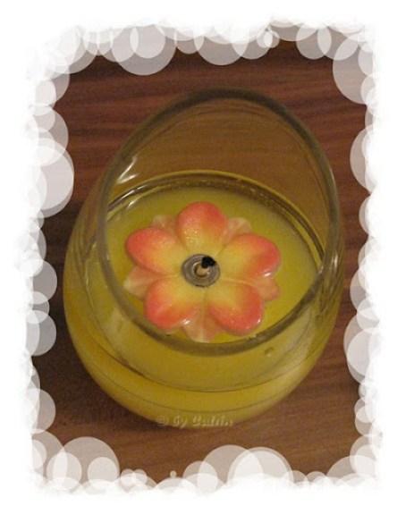 Feuerblume (2)