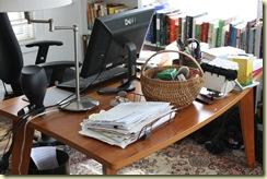 deborah kops desk with Elsie